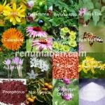 homoeopathic anti-inflammatories_wm