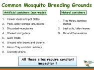 guidelines-on-the-prevention-of-dengue-fever