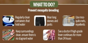 Prevention of vector borne diseases - malaria, dengue, chikungunya